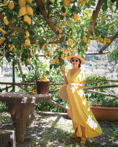 Amalfi lemon grove tour + Italian cooking class