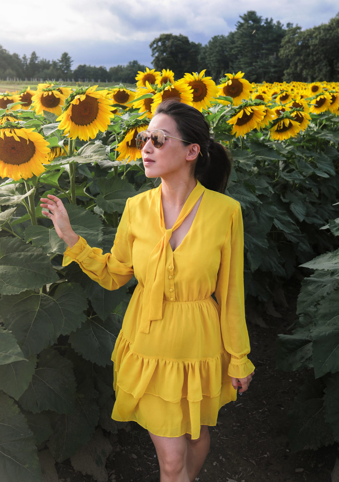 parlee farms sunflower field yellow dress