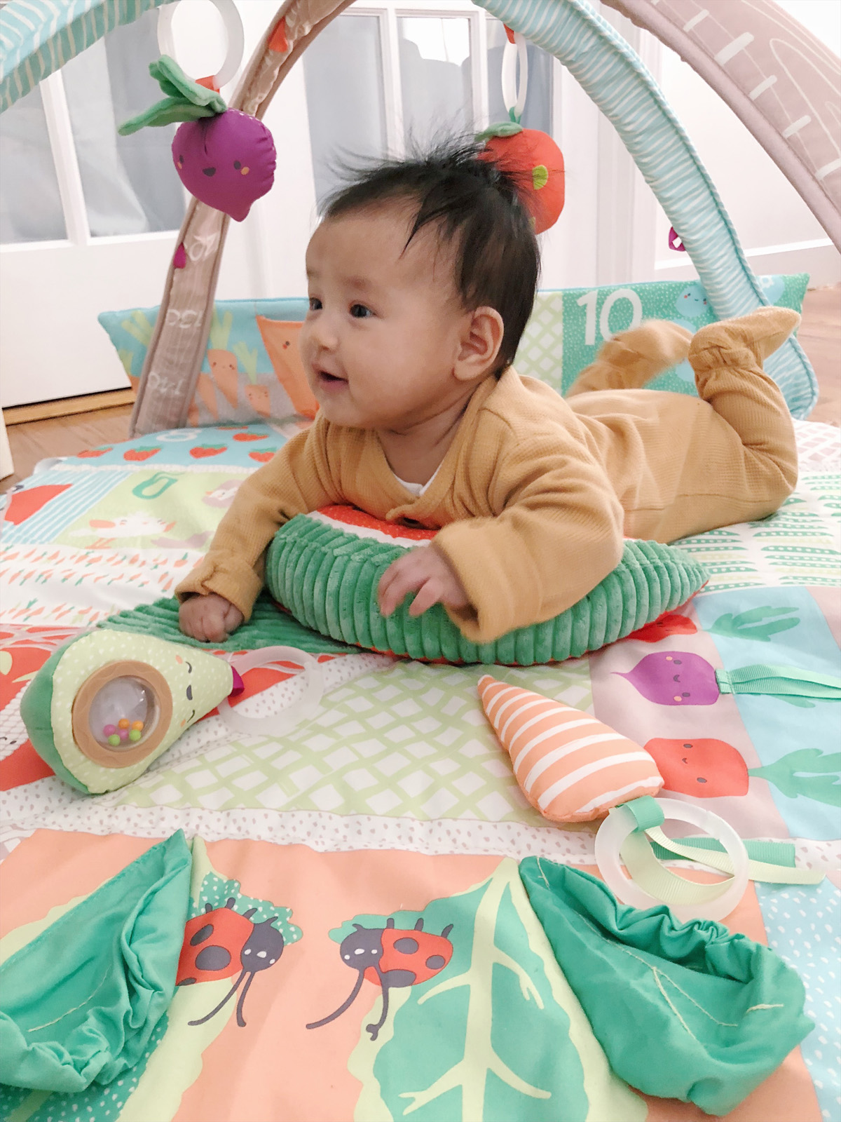 skiphop registry baby mat activity gym farmstand