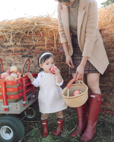 Apple Picking in Red Hunter Boots (on Sale!)